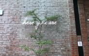 Led Neon Sign - Ưu điểm vượt trội so với Neon Thùy Tinh
